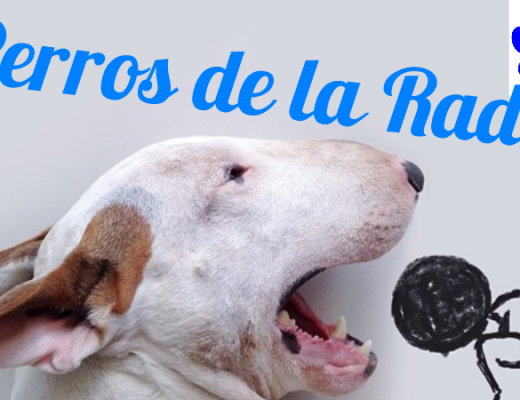 Perros de la Radio