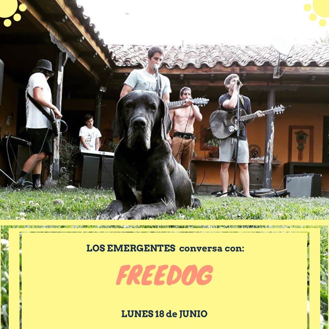 Freedog, desde el valle del Aconcagua a los escenarios